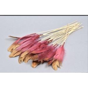 Feather op stok – 6 stuks – Pink/Gold – 30cm