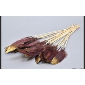 Feather op stok – set van 6 stuks – Purple/Gold – 30 cm
